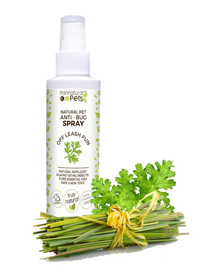 All Natural Outdoor defence - Insect Repellent Spray