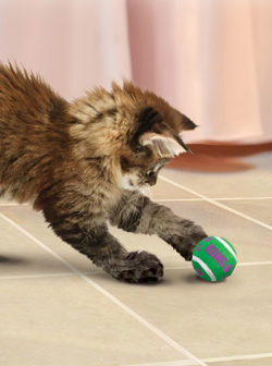 KONG Cat Toy Tennis Balls