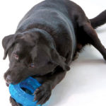Orka-tyre-by-Petstages-1