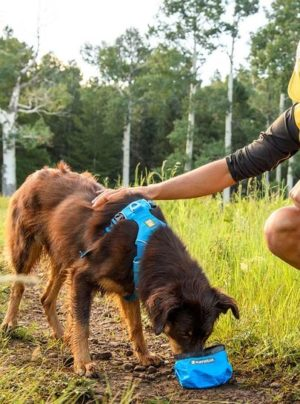 Trail Runner Bowl by Ruffwear
