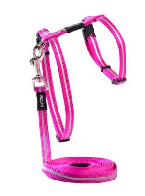 Rogz AlleyCat Harness and Lead Set