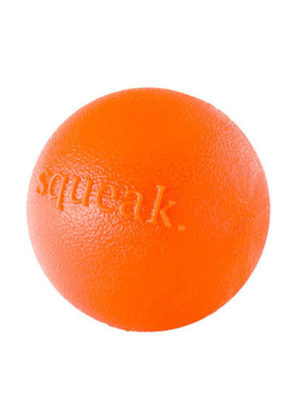 Planet Dog Squeak Ball