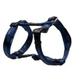 Alpinist-Soft-Webbing-H-Harness_Blue