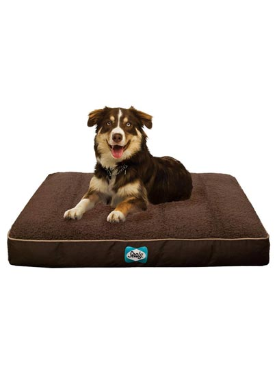 Sealy Cushy Comfy Flat Dog Bed