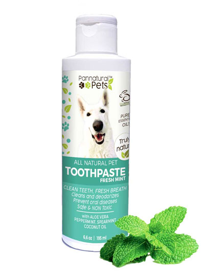 Natural Pet Toothpaste