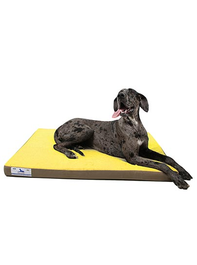 Dog-O-Pedic Memory Foam Mattress Orthopedic