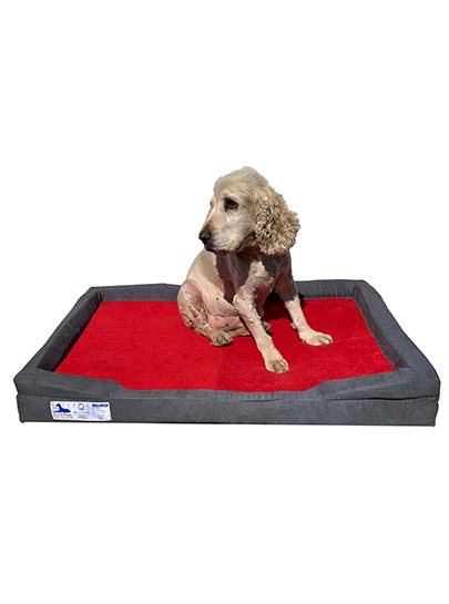 Dog-O-Pedic Throne Memory Foam Orthopedic Mattress