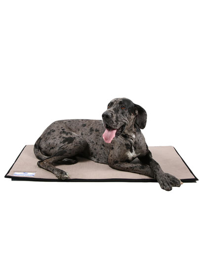 Dog-O-Pedic Day Mat Memory Foam