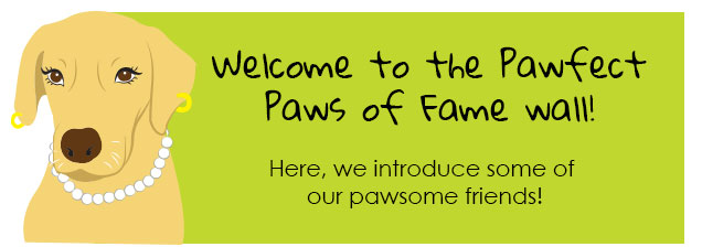 Pawfect_friends_Lily_Intro