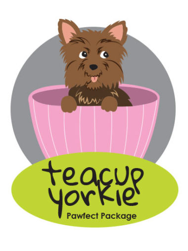 Teacup Yorkie Package