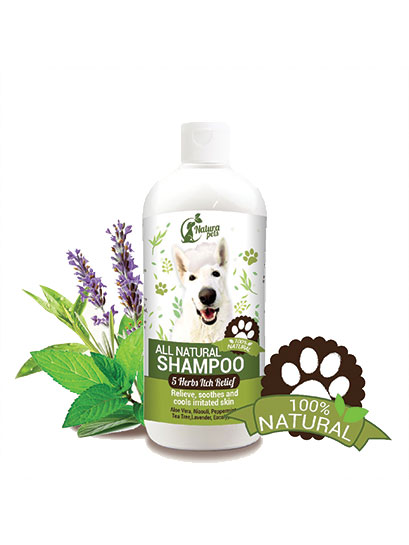 5 Herbs Itch Relief Herbal Pet Shampoo