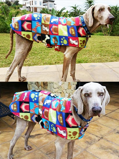 Warm-me-up Dog Jersey