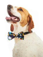 pawfect-bowties-sweeties2