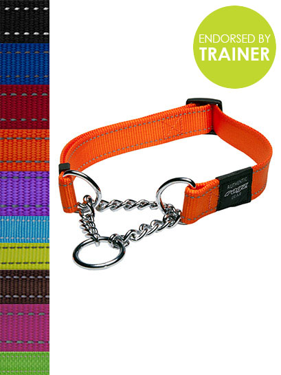 Fanbelt Obedience Collar - Rogz